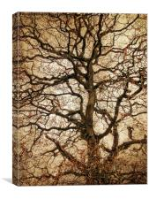 Autumn Love Tree, Canvas Print