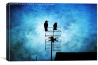 Two Crow Blues, Canvas Print