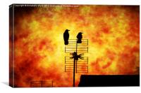 Two Crow Fire, Canvas Print