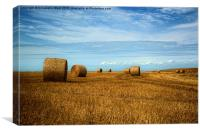 Straw Bale Fields Forever., Canvas Print