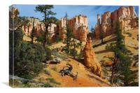 Dry logs, trees and rock torrets, Canvas Print