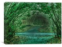 Eglinton Woodland Arches, Canvas Print