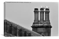 Chimney Roost, Canvas Print