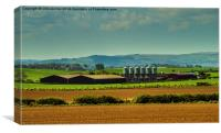 Scottish Springtime Farm, Canvas Print