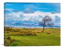 Campsie Hills from Gleniffer Braes, Canvas Print
