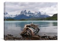 Torres del Paine, Canvas Print