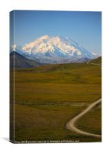 The road to McKinlay, Denali, Canvas Print