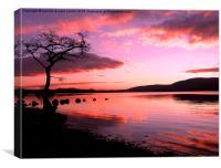 Loch Lomond in Feb, Canvas Print