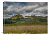 Dumgoyne hill, Strathblane, Canvas Print
