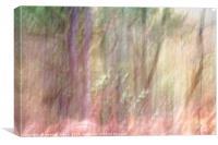 Autumn Woodland II, Canvas Print