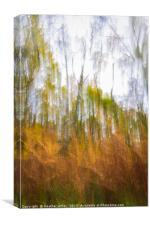 Fall , Canvas Print