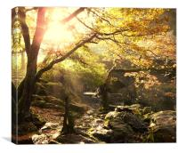 Morning Sun in Betws-Y-Coed, Canvas Print