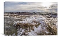 A Icy Kinder Scout, Canvas Print