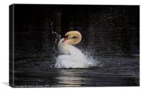Splash down, Canvas Print