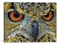 beaky, Canvas Print