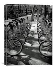Bike park bw, Canvas Print
