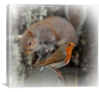 Robin with friend, Canvas Print