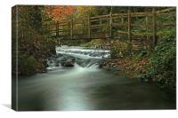 Footbridge Over Pool In Autumn, Canvas Print