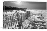 Snow Beach, Canvas Print