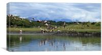 Flying Flamingoes - Tanzania, Africa, Canvas Print