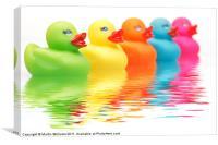 Rainbow Ducks, Canvas Print