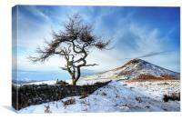 Winter at Roseberry Topping, North Yorkshire