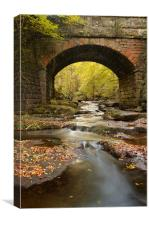 Bridge over May Beck, Canvas Print