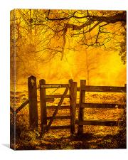 Gate to Nowhere, Canvas Print