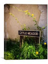 Little Meadow, Canvas Print