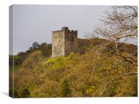 Dolwyddelan Castle, Canvas Print