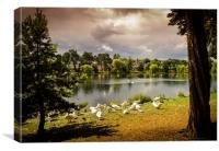 Roath Park Lake, Canvas Print