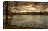 Roath Park Storm