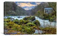 Cenarth Mill and Falls, Canvas Print