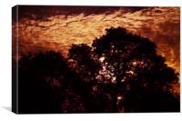Pembrokeshire Sunset, Canvas Print