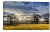 Pembrokeshire Countryside, Canvas Print