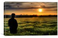 Cornfield Sunset, Canvas Print