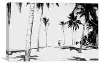Palm Trees India, Canvas Print