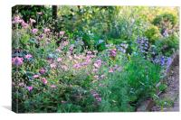 English Country Garden, Herts, Canvas Print