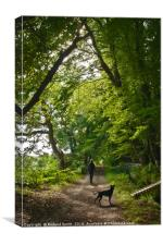 A walk with 'Lucy', Canvas Print