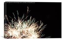 Curly Fireworks - Multi-coloured, Canvas Print
