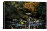 Autumn on the Don, Canvas Print