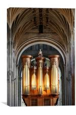 The Pipes Of Norwich Cathedral, Canvas Print
