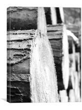 logs, Canvas Print