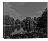 Pond Collection 18, Canvas Print