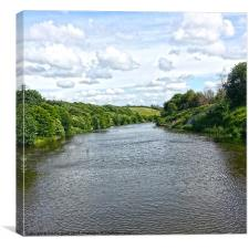 River Weaver, Canvas Print