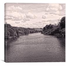 River Weaver 2, Canvas Print