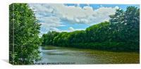 River Weaver 3, Canvas Print