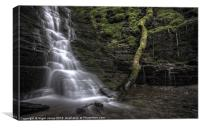 Fallen Tree At The Falls, Canvas Print