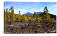 Mt. Tiede