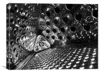 Inside the cheese grater, Canvas Print